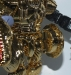 japanese beast wars - lucky draw gold megatron image 44