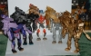 gold lio convoy image 100