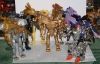 gold lio convoy image 110
