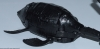 beast wars neo - lucky draw black magmatron image 30