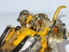 beast wars neo - lucky draw gold big convoy image 62