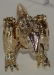 gold magmatron image 50