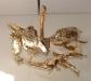 gold magmatron image 93