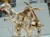 gold magmatron image 109