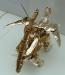 gold magmatron image 135