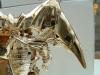 gold magmatron image 176