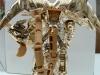 gold magmatron image 177