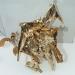 gold magmatron image 182