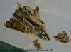 gold jetfire image 13
