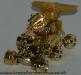 gold sonar image 8
